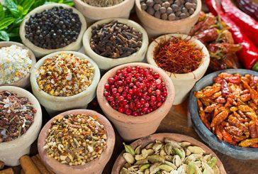 Ayurveda - 7 Distinctive Variations Between Modern and Ayurvedic Medicines