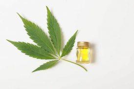 CBD Oil: Sleep, Anxiety, And Insomnia Treatment